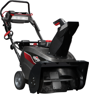 Briggs & Stratton BS822E